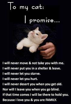 I promise......