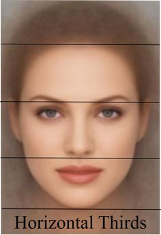 Guideline for the length of the nose: A well-proportioned face may be divided into equal thirds by drawing horizontal lines through the forehead hairline, the brow, the base of the nose and the edge of the chin. #Rhinoplasty #3DComputerImaging