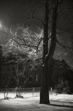 Snowless Foggy Night In Madison >> 18 Best Chiberia Images Chicago Illinois Chicago Travel Chicago Usa