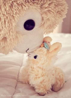 Nuzzle by .::Avalon Jane::., via Flickr