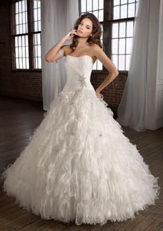 Those who like the traditional ballgown look, why not go for something more modern in this gorgeous dress with feathers and beading :).