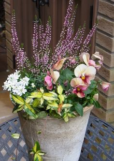 If you were looking for (container garden), take a look below Winter Planter, Fall Planters, Pine Garden, Garden Pots, House Plants Decor, Plant Decor, Container Plants, Container Gardening, Beautiful Gardens