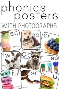 Phonics Posters with bright, bold, engaging photographs! 2nd Grade Classroom, New Classroom, Classroom Community, Classroom Design, Classroom Themes, Colorful Snakes, Phonics Lessons, Short Vowels, Classroom Environment