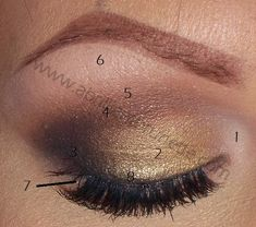 How To Apply Eyeshadow | Eyeshadow Placement Chart ~ A Brilliant Brunette