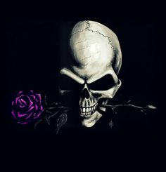 a rose is a rose,,