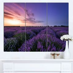 You'll love the 'Beautiful Lavender Flowers At Sunset' 3 Piece Photographic Print on Wrapped Canvas Set at Wayfair - Great Deals on all Décor  products with Free Shipping on most stuff, even the big stuff.
