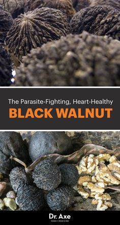 Did you know there's a type of walnut in particular, the black walnut, that provides some remarkable benefits of its own?