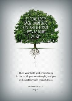 Let your roots grow down into HIM, and let your lives be built on HIM. Then your faith will grow strong in the truth you were taught, and you will overflow with thankfulness. -Colossians 2:7-