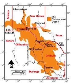 New Mexico Chihuahuan Desert Family History Pinterest Deserts - Us map deserts