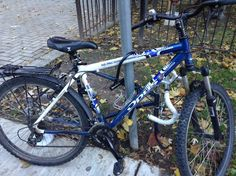 Just when that bike lost all hope, it found a new friend. Life is good again for the public art bike.