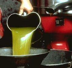 """La produzione dell'olio nel territorio viterbese ha origini antichissime. Si pensa siano stati i greci ad """"importarne"""" l'uso. Di certo furono gli Etruschi a diffondere la conoscenza delle complesse tecniche di estrazione dell'olio dalle olive, secondo quanto raccontano alcune immagini dipinte in vasi ed affreschi che rappresentano scene di raccolto. Esperti nella coltivazione agricola, ben presto diverranno celebri nell'Italia antica per la loro abilità """"insegnando"""" ai Romani tali tecniche."""