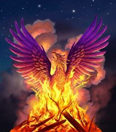 Phoenix Rising-legend is she can be burned and resurrects from the ashes more beautiful than before. My spirit animal.