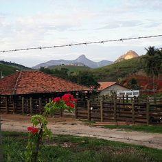 A simplicidade e os encantos do interior. #minasgeraisoficial #conhecaminas #interiordeminas #roça #fazenda #chacara #sitio #countryside #farm #farmlife #vidanocampo #homemdocampo #paisagem #landscape #photography #ig_captures #ig_great_shots #ig_great_pics [��] http://tipsrazzi.com/ipost/1512277791809707296/?code=BT8sKOmh50g