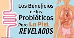 Los probióticos o microorganismos intestinales pueden enviar señales a su piel y a su mucosa, lo que demuestra los beneficios de los probióticos en la piel. http://articulos.mercola.com/sitios/articulos/archivo/2016/08/14/relacion-entre-los-probioticos-y-la-piel.aspx