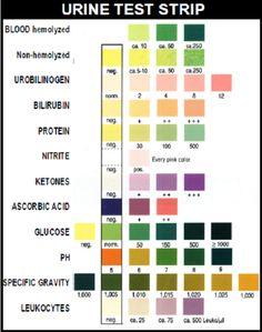 A Nurse's Ultimate Guide to Lab values and Interpretation: http://www.nursebuff.com/2014/09/laboratory-values-for-nurses/