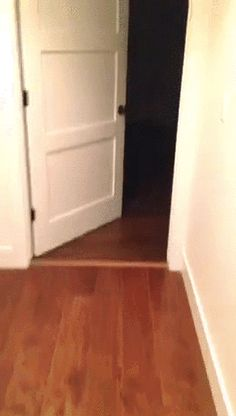 21 Best GIFs Of All Time Of The Week from best GOAT and B...