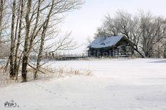 Abandoned Homestead in Rose Valley, Saskatchewan
