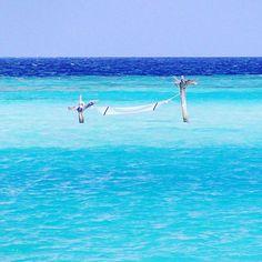 【omikata0063】さんのInstagramをピンしています。 《#海の中のハンモック #海 #ハンモック #白いハンモック #空と海のグラデーション #青空 #快晴 #グラデーション#モルディブ #ギリランカンフシ モルディブ #hammock in the sea #sea #jammock #white hammock #gradation of the sky and the sea #bluesky #sunny #gradation #maldives #hirilankanfushi maldives》