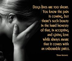 So true.  Was reminded this evening :( 15 years, she was a great dog.