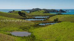 Bay of Islands New Zealand Bay Of Islands, Auckland New Zealand, Golf Courses, Explore, Exploring