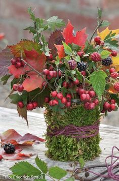 Pin Decor - Just another WordPress site Thanksgiving Decorations, Seasonal Decor, Fall Decor, Christmas Decorations, Holiday Decor, Deco Floral, Arte Floral, Floral Design, Fall Crafts