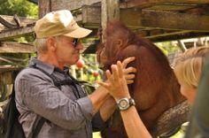 Save the Orangutan :: Harrison Ford at Nyaru Menteng