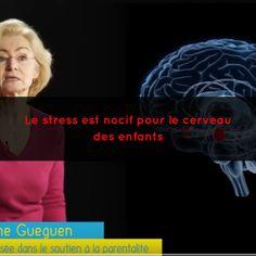 Dans cette vidéo, Catherine Gueguen nous explique quels sont les impacts du stress excessif sur le cerveau des enfants.