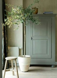 25 Home Decoration Organization and Storage Tips Contemporary interior design – More Interior Trends To Not Miss. The Best of home indoor in Decor, Home Decor Accessories, Interior, Farmhouse Decor, Painted Furniture, Green Decor, Decor Inspiration, Green Furniture, Indoor Plants