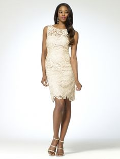 Crew neck sheath dress with lace overlay. Strapless attached slip.   Hidden back zipper with hook and eye closure at back. Back key hole. 35   inch body length100% polyesterImportDry clean