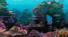 finding-nemo-background-12-things-every-finding-nemo-fan-needs-to-know-jpeg-235532.jpg (620×334)