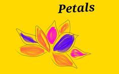 We all love summer petals 🤗