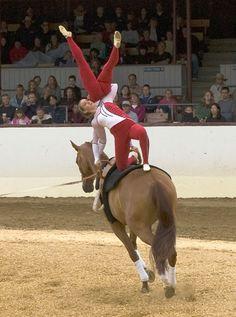 Equestrian+Vaulting | Equestrian Vaulting - World Equestrian Games 2010