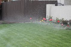 #LawnCare #gardenchat share by @FLINTSCAPE