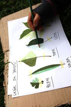 Listová leporela | Učíme venku