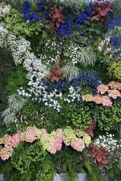 VIVIT - Painting with Plant's how Monnet | vivit
