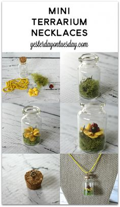 Mini Terrarium and Succulent Necklaces | Yesterday On Tuesday