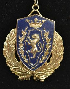 Unique! Large Coat of Arms Royal Lion Crest Shield Necklace #costumedesign #theater #production #costumes #cosplay #renaissance #renaissancefair #medieval #lannister #sevenkingdoms #gameofthrones #shopgoodwill