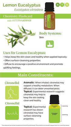 Lemon Eucalyptus, Doterra Oils, Body Systems, Chemistry, Diffuser, Essential Oils, Encouragement, How To Apply, Positivity