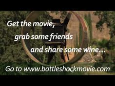 Real People/Real Stories about Bottle Shock