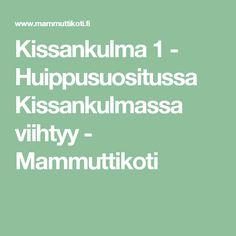 Kissankulma 1 - Huippusuositussa Kissankulmassa viihtyy - Mammuttikoti