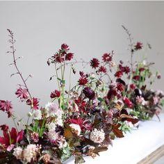 beautiful centerpiece in Burgundy with delicate flowers like Heuchera Astrantia Hanging Flowers, Flower Garlands, Flower Decorations, Berry Wedding, Floral Wedding, Wedding Flowers, Floral Centerpieces, Floral Arrangements, Centrepieces