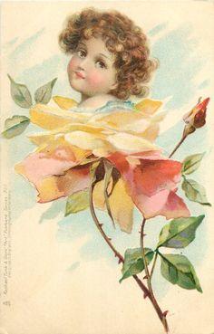 Rose Flower Faces postcard illustrated by Frances Brundage, 1903