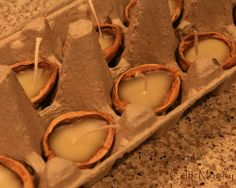 Using an egg crate to make walnut-candles. - Reminds me of the story of. Oak and Pine, maybe? each ruling for half of the year, trading places every Litha & Yule. Diy Projects To Try, Craft Projects, Shell Candles, Floating Candles, Walnut Shell Crafts, Diy For Kids, Crafts For Kids, Yule, Diy And Crafts