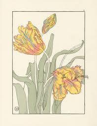 having a victorian moment - tulip illustration Foord Pochoir