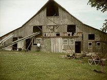 An Amish Way of Life