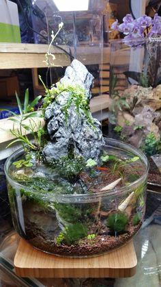 Mini waterfall  Table aquarium