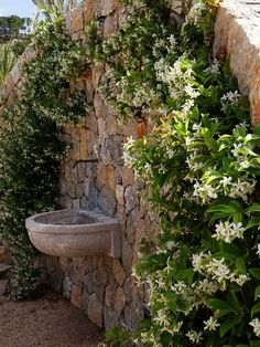 A jasmine arch frames this water feature.
