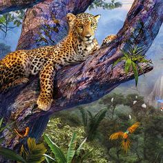 Beautiful Rainforest by MGL Meiklejohn Graphics Licensing Jungle Art, Wild Life, Digital Art, Paintings, Graphics, Wall Art, Artwork, Gifts, Photography