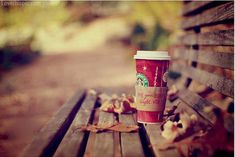 Holiday Starbucks Pictures, Photos, and Images for Facebook, Tumblr, Pinterest, and Twitter