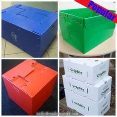 Corrugated Plastic Box/corflute Box/ Mail Tray --- China Supplier Photo, Detailed about Corrugated Plastic Box/corflute Box/ Mail Tray --- China Supplier Picture on Alibaba.com.